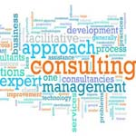 TARGEMLI MANAGEMENT CONSULTING SECTOR OF EXPERTISE